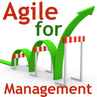 Training: AGILE FOR MANAGEMENT